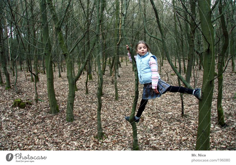 Child Nature Tree Leaf Forest Environment Autumn Playing Infancy Hiking Adventure Action Climbing To hold on Skirt Tree trunk