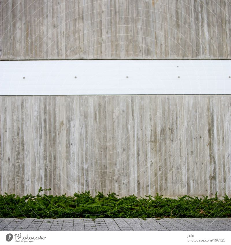 White Green Plant Wall (building) Gray Wall (barrier) Building Architecture Concrete Facade Bushes Simple Manmade structures Paving stone Sharp-edged