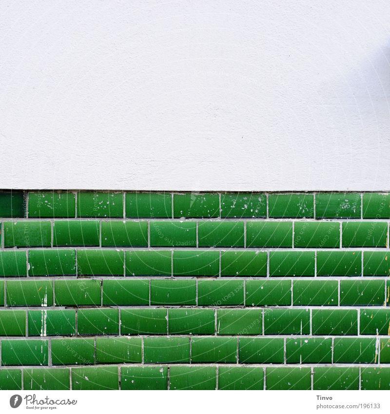White Green Wall (building) Dye Wall (barrier) Facade Fresh Tile Plaster Painter Insulation