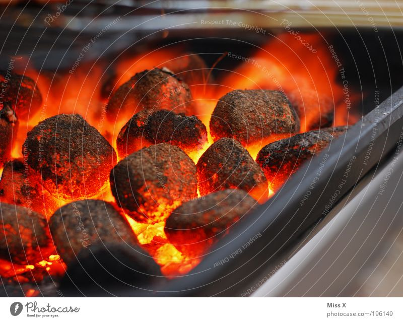 Coal Barbecue (apparatus) Hot Barbecue (event) Camping Glow Grill Material Charcoal (cooking)