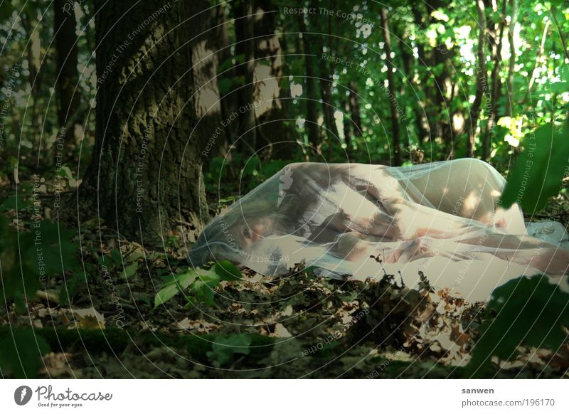 forest spirit Feminine Body Skin Nature Earth Sunlight Summer Beautiful weather Warmth Plant Tree Forest Cloth Blonde Long-haired To enjoy Lie Looking Sleep