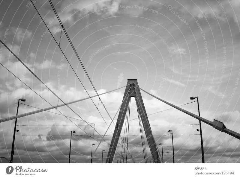 Sky Clouds Above Architecture Large Tall Esthetic Bridge Middle Manmade structures Long Strong Steel cable Street lighting Connection Traffic infrastructure