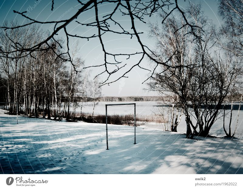 Goalless Environment Nature Landscape Cloudless sky Horizon Winter Beautiful weather Ice Frost Snow Tree Bushes Lake Wood Stand Wait Bright Cold Gloomy Patient