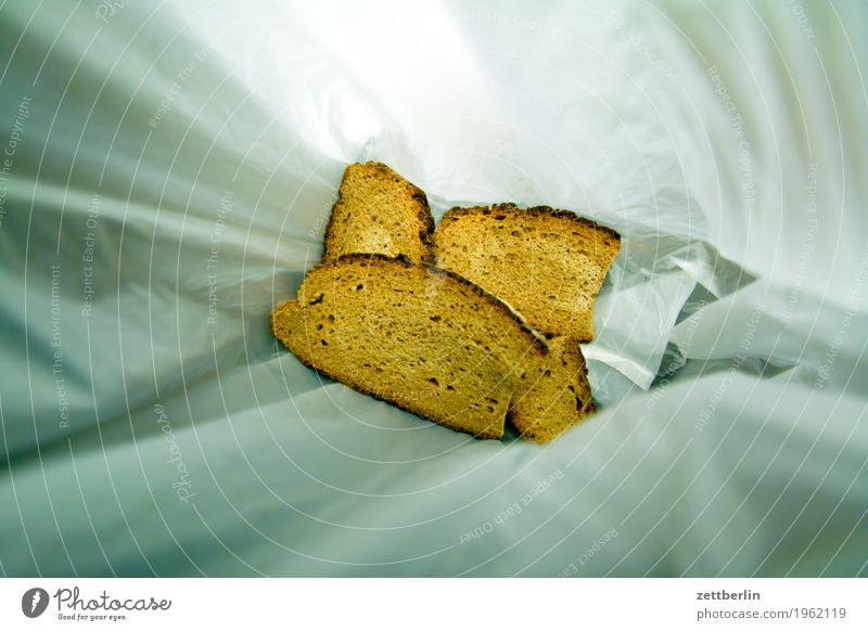 Light approach of mould Trash Biogradable waste Bread Healthy Eating Dish Food photograph Deserted Slice Slice of bread Sandwich Mold Bag Copy Space Paper bag