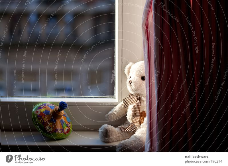 At the window Leisure and hobbies Playing Living or residing Flat (apartment) Decoration Children's room Toys Teddy bear Gyroscope Emotions Contentment