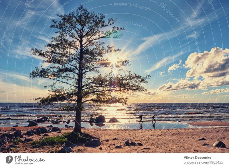 Tourists walk along the beach Human being Sky Nature Vacation & Travel Man Blue Summer Beautiful Sun Landscape Ocean Beach Adults Lifestyle Coast Happy