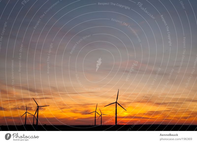 evening breeze Technology Advancement Future Energy industry Renewable energy Wind energy plant Environment Nature Landscape Air Sky Clouds Horizon Sunrise