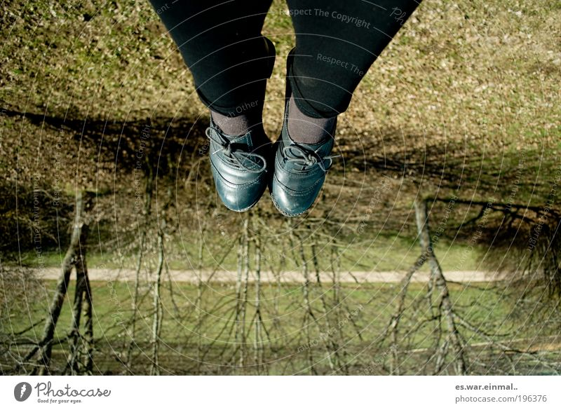 upside.down Feet Beautiful weather Tree Meadow Hang Crouch Lie Sit Happiness Contentment Colour photo Day