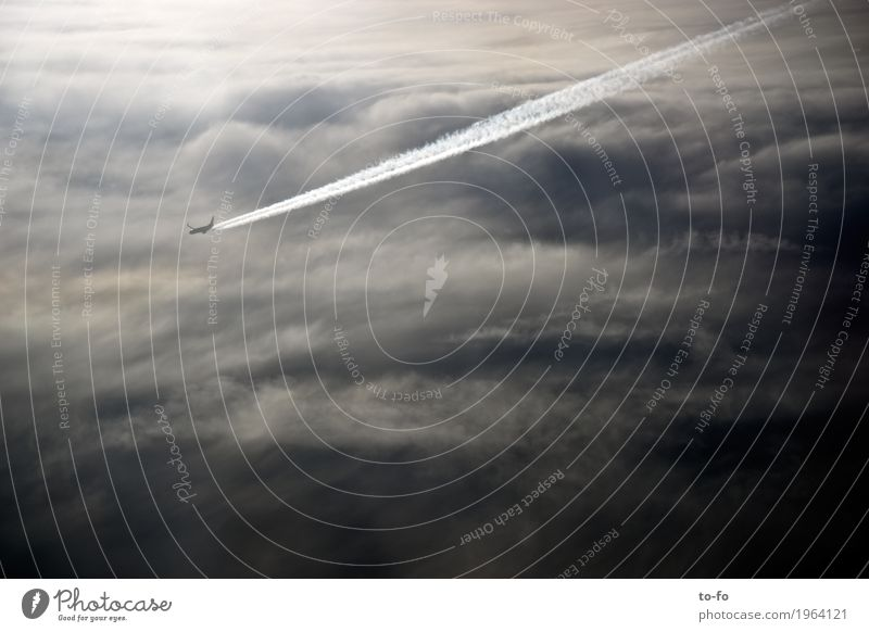 over the clouds... Aviation Airplane Passenger plane Flying Speed Clouds Sky Speed rush Vapor trail Subdued colour Exterior shot Deserted Copy Space right