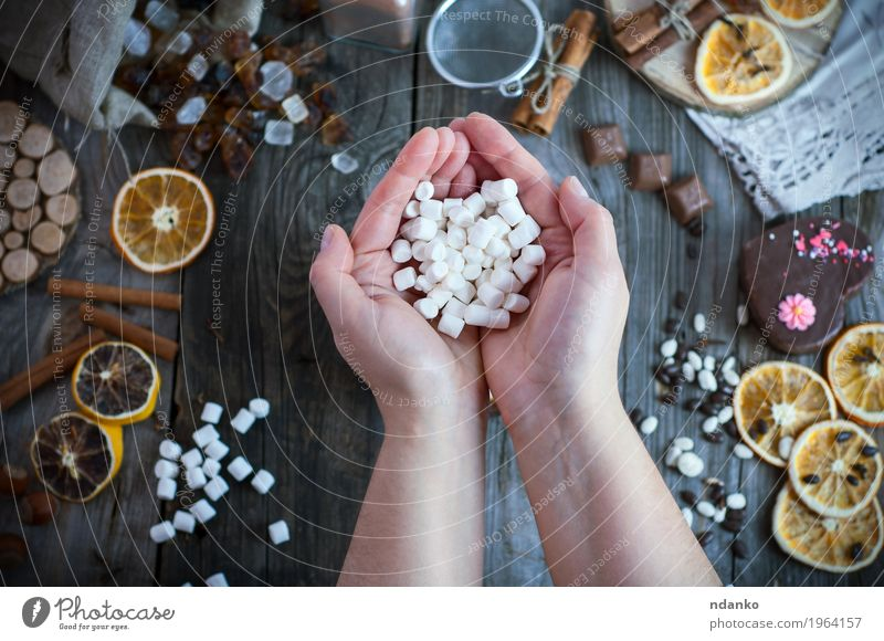 Two female hands holding a bunch of white marshmallow Human being Woman Youth (Young adults) Hand 18 - 30 years Adults Eating Wood Food Gray Brown Above Open