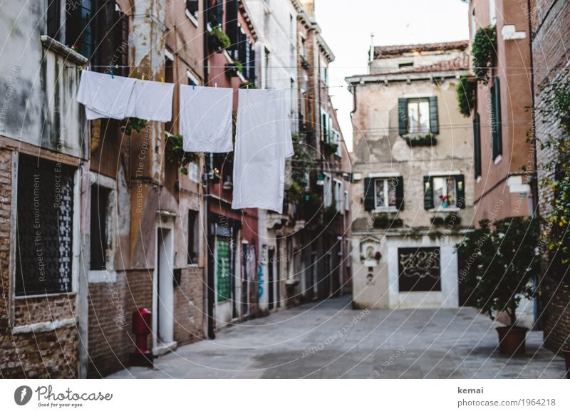 Vacation & Travel Old Town White House (Residential Structure) Calm Window Street Lanes & trails Tourism Facade Door Authentic Italy Serene Old town
