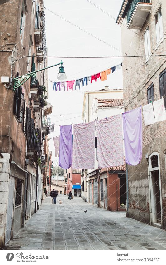 Human being Town House (Residential Structure) Calm Window Lanes & trails Facade Living or residing Door Fresh Authentic Italy Clean Violet Street lighting