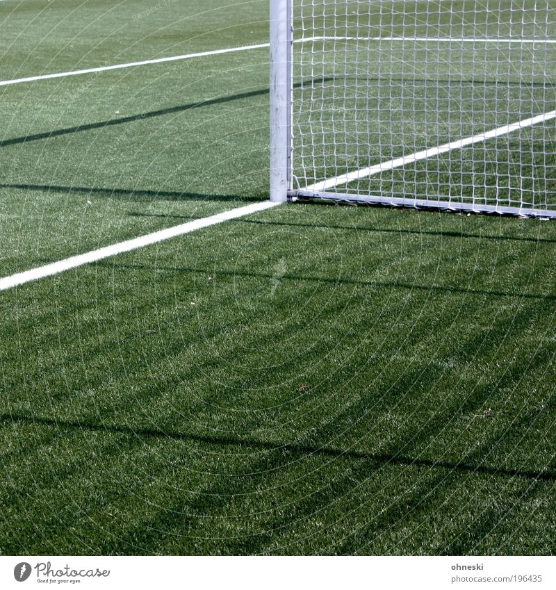 gate Sports Ball sports Goalkeeper Soccer Sporting Complex Football pitch Playing Green Net gain Lose World Cup World Cup 2010 Colour photo Exterior shot