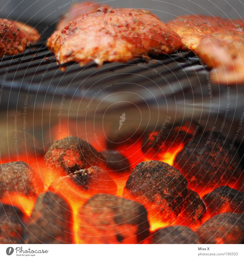 Nutrition Food Hot Burn Barbecue (event) Organic produce Fat Meat Barbecue (apparatus) Coal Cooking & Baking Glow Grill Raw Steak