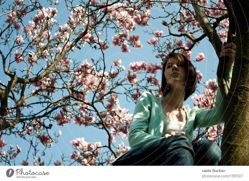 Human being Nature Youth (Young adults) Blue Green White Tree Feminine Freedom Blossom Think Spring Contentment Pink Sit