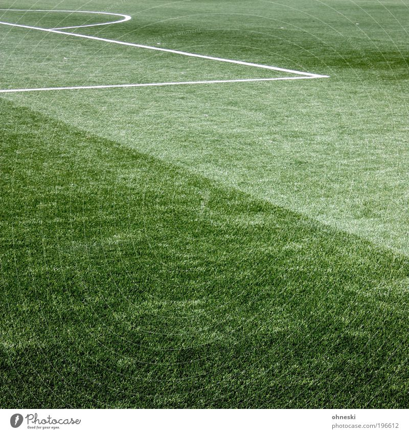 16 Sports Sportsperson Goalkeeper Success Soccer Sporting Complex Football pitch Green Artificial lawn Penalty area Penalty kick World Cup Colour photo