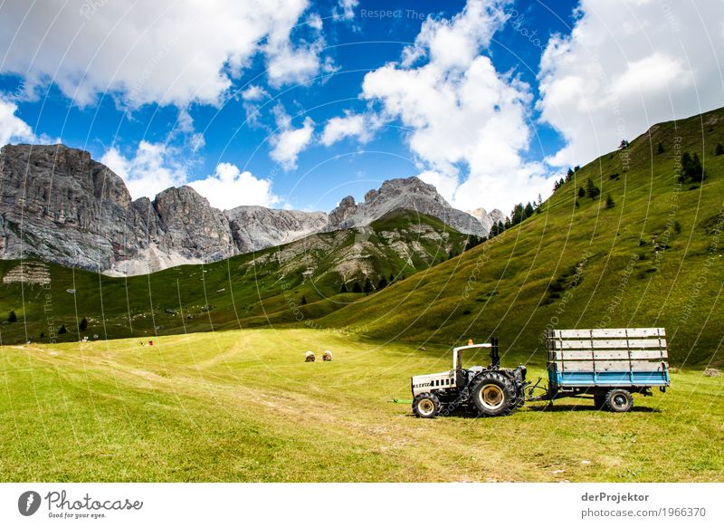 Tractor with panorama in the Dolomites Central perspective Deep depth of field Sunbeam Sunlight Light (Natural Phenomenon) Silhouette Contrast Shadow Day