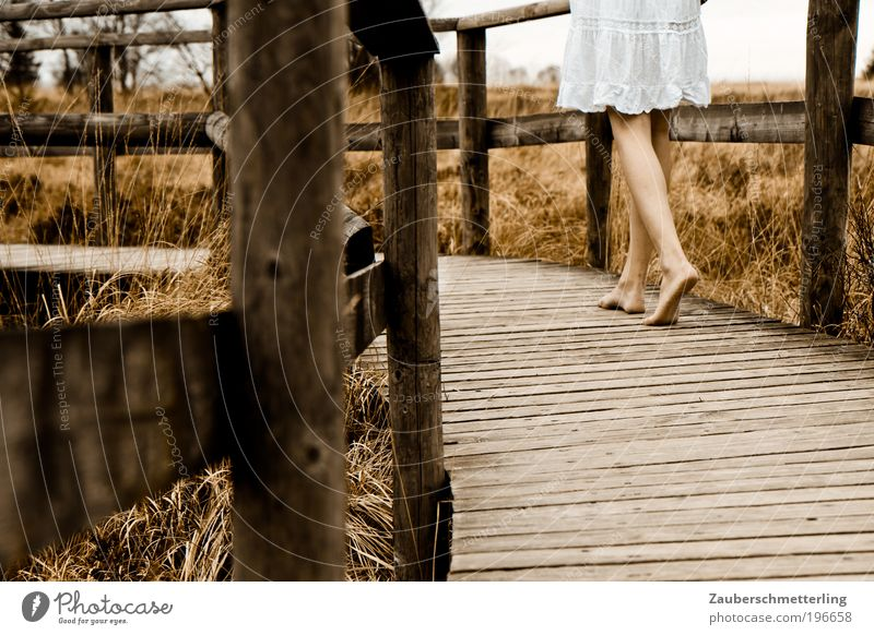 barefoot Senses Calm Feminine Young woman Youth (Young adults) Legs Feet 1 Human being 18 - 30 years Adults Nature Autumn Grass Bog Marsh Wood Going Authentic