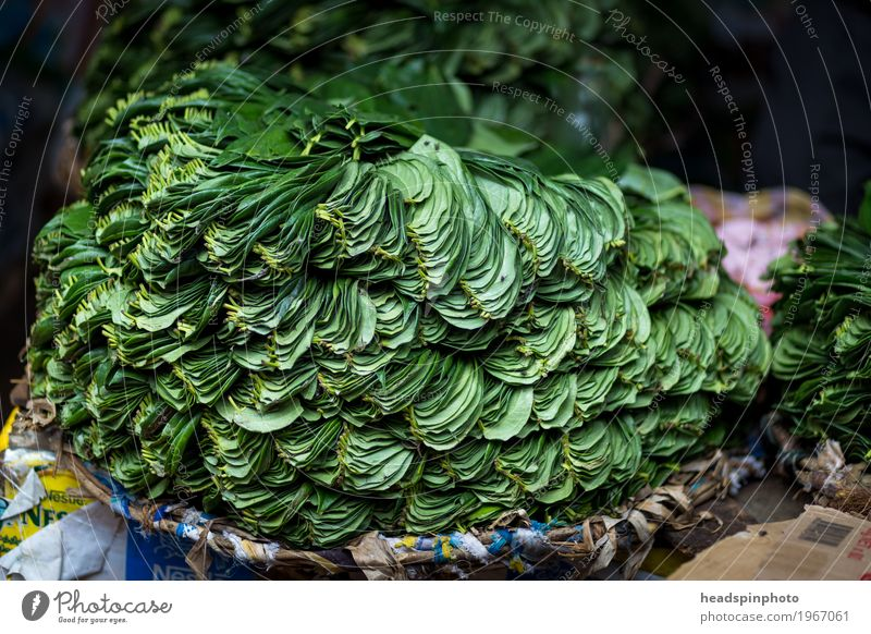 Betel leaves on a market in Sri Lanka Kandy Asia Shopping Sell Green Betel leaf betel Market stall Leaf India Agriculture Stack Chew Colour photo Deserted