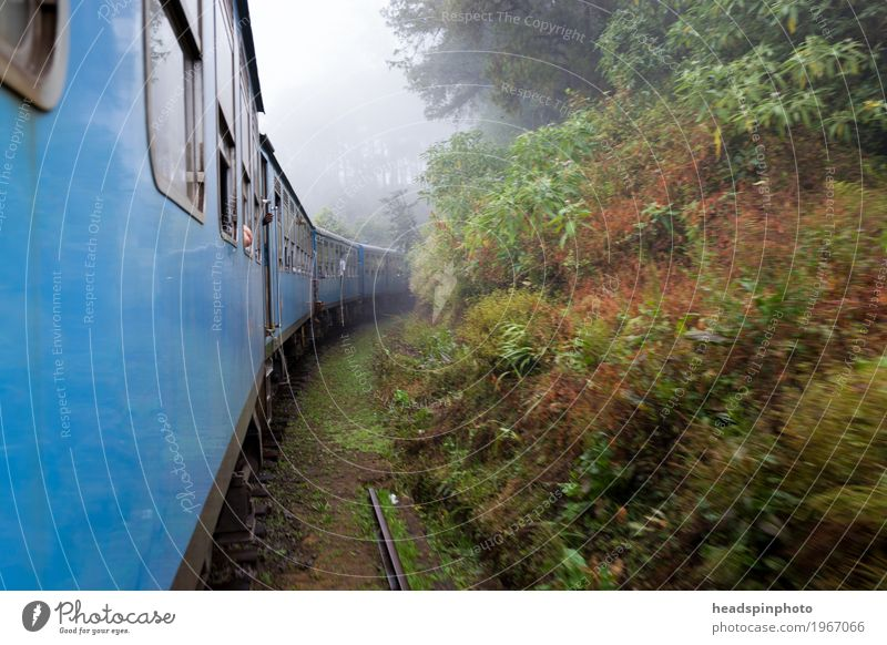Train ride through fog in Sri Lanka Virgin forest Hill Mountain Passenger traffic Public transit Train travel Rail transport Engines Driving Vacation & Travel