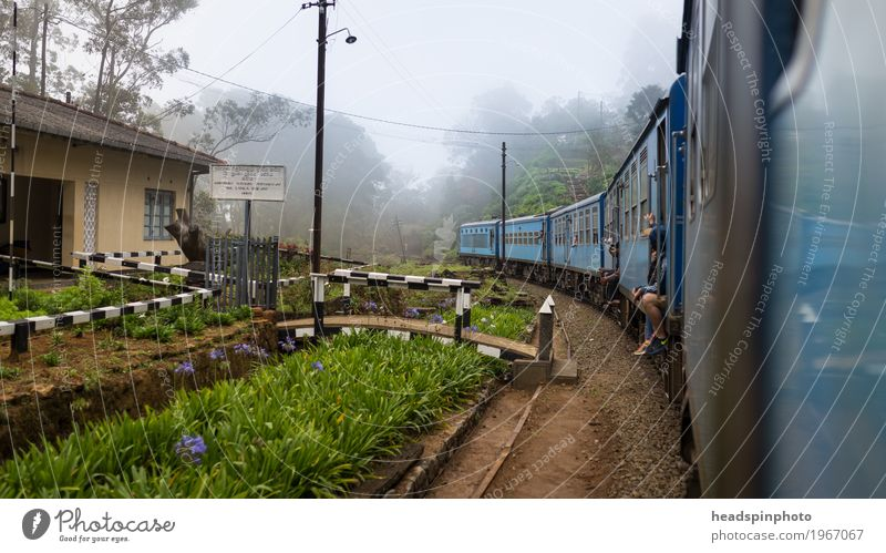 Nature Vacation & Travel Blue Landscape Loneliness Far-off places Freedom Tourism Trip Speed Adventure Railroad Driving Rural Track Train station