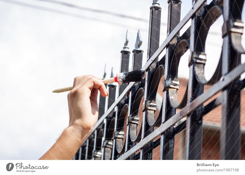 Human being Hand Small Garden Work and employment Masculine Tall Point Touch Painting (action, work) Fence Upward Effort Painter Optimism Gardening