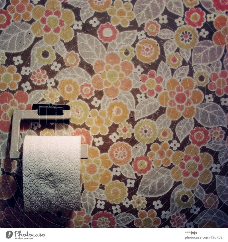 Old Flower Plant Leaf Wall (building) Retro Bathroom Human being Toilet Interior design Feces Wallpaper Past Sixties Urinate