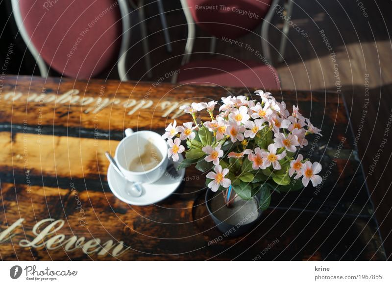 coffee time Coffee Cappuccino Cup Vacation & Travel Trip Blossoming Original Pink plastic flower Artificial Artificial flowers Empty Café Netherlands Life