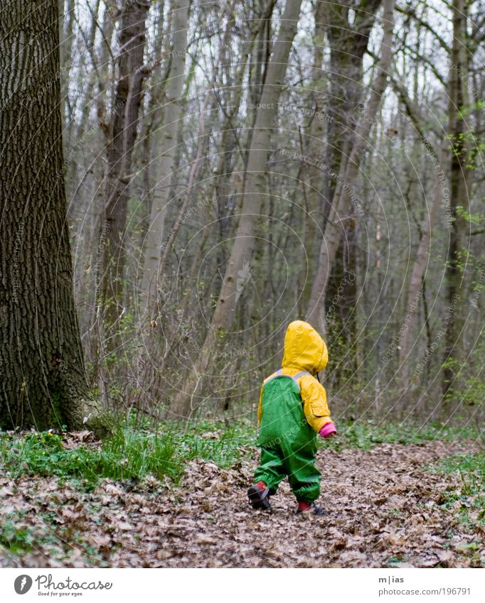 small ranger Androgynous Child Toddler Girl Boy (child) Infancy Life 1 Human being 1 - 3 years Environment Nature Plant Earth Autumn Bad weather Wind Rain Tree
