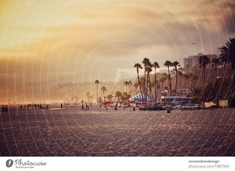 Los Angeles Beach at Santa Monica Pier Environment Nature Landscape Plant Animal Clouds Sunrise Sunset Beautiful weather Exceptional Friendliness Happiness Joy