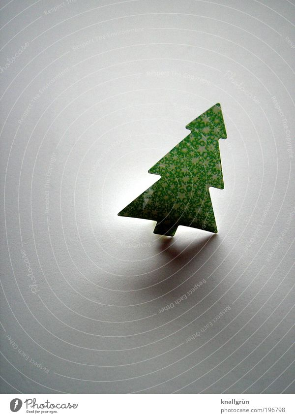 latecomers Tree Christmas tree Illuminate Gray Green Anticipation Adorned tilted position Christmas & Advent December December 24 Colour photo Subdued colour