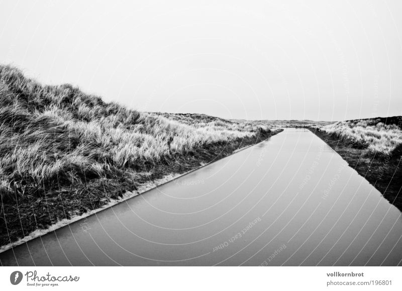 waterway Nature Landscape Earth Water Bad weather Wind Rain Marram grass Island Sylt Beach dune Relaxation Infinity Wet Black White Black & white photo