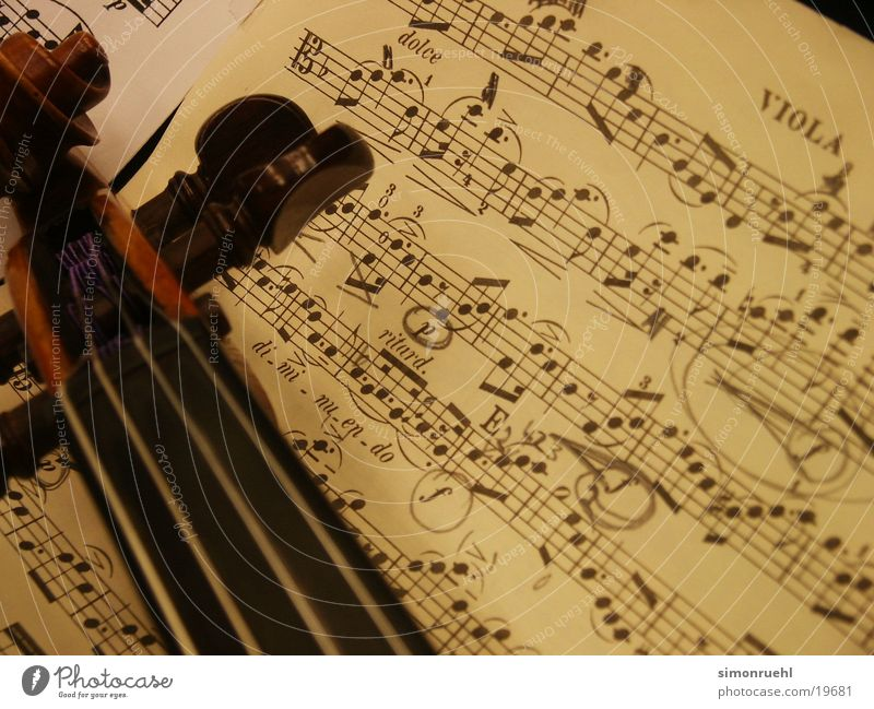 Beautiful Leaf Music Musical instrument Concert Musical notes Violin Musical instrument string Viola