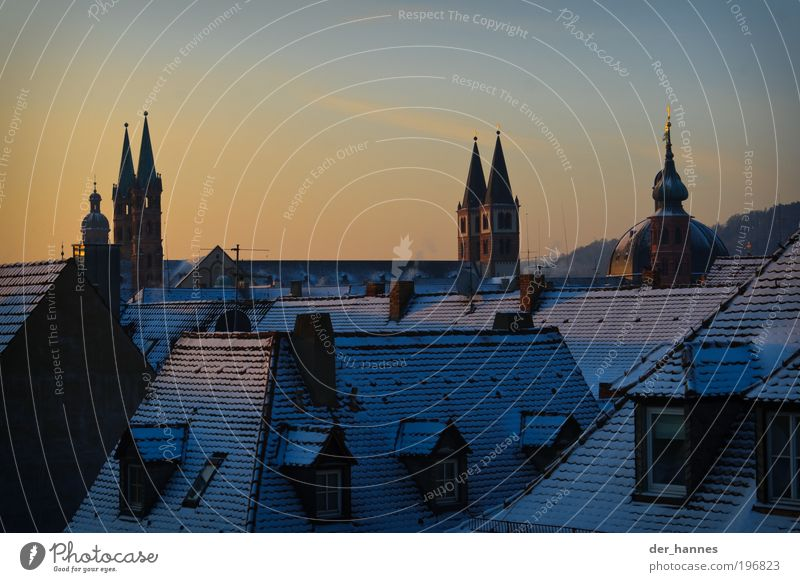 cathedral points Würzburg Franconia Europe Town Skyline House (Residential Structure) Church Dome Castle Window Door Roof Eaves Chimney Tourist Attraction