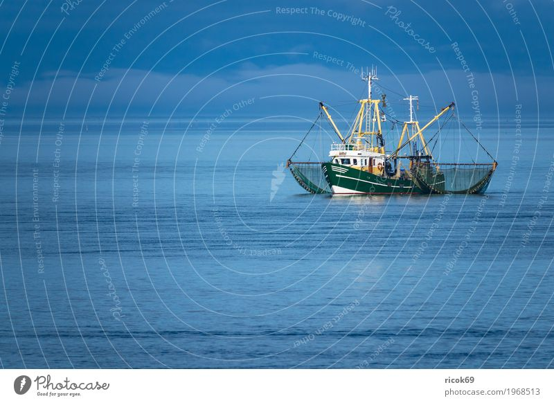 Crab cutter on the North Sea off the island of Föhr Relaxation Vacation & Travel Tourism Island Water Clouds Coast Fishing boat Watercraft Net Nature Fohr