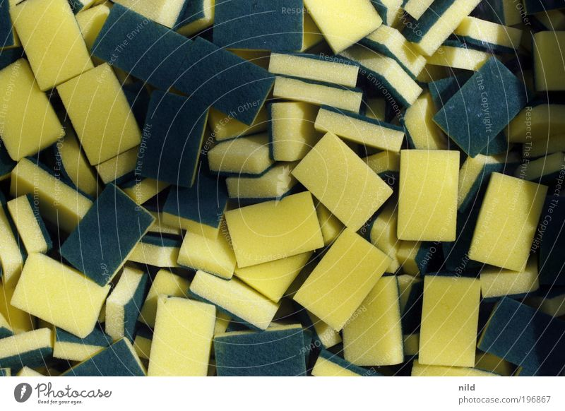 Green Yellow Flat (apartment) Kitchen Clean Living or residing Cleaning Crockery Do the dishes Room Sponge Cleanliness Detergent