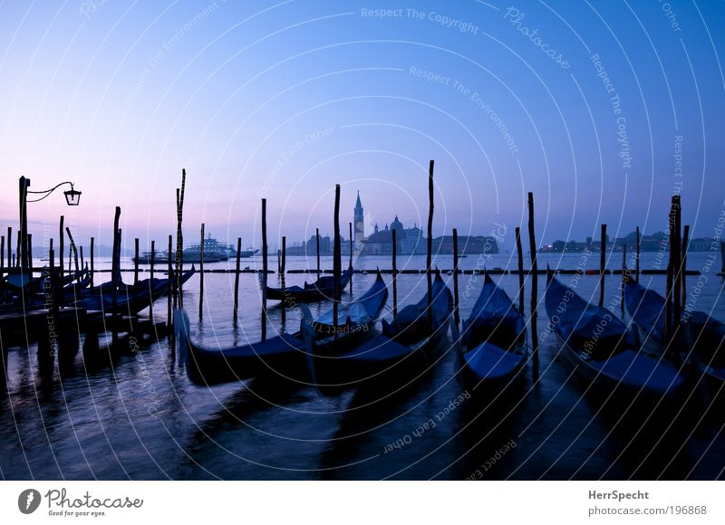 Blue hour Water Sky Cloudless sky Beautiful weather Waves Coast Ocean Adriatic Sea Island Venice Town Old town Deserted Church Harbour Tourist Attraction