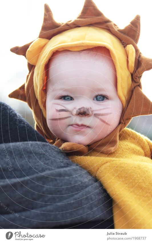 baby lion Joy Carnival Feminine Baby Infancy Head 1 Human being 0 - 12 months Circus Zoo Wild animal Animal face Pelt Lion Looking Cool (slang) Funny Beautiful