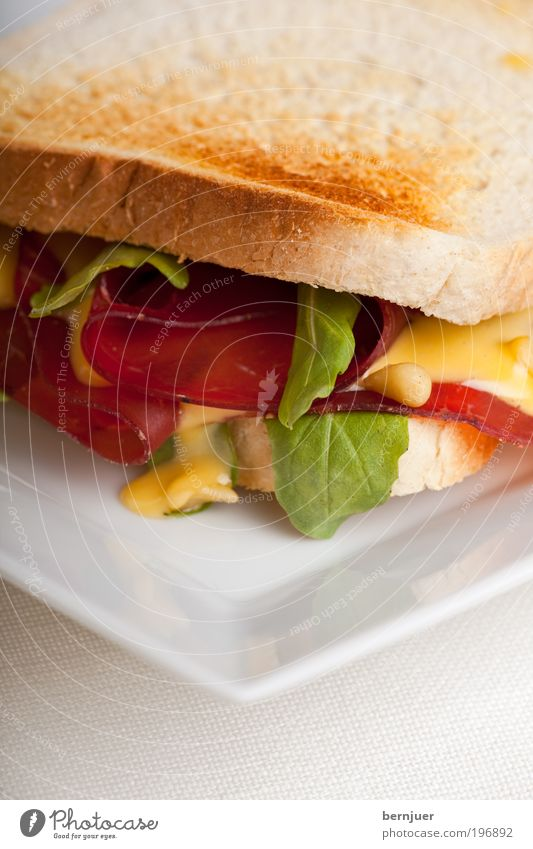 Nutrition Food Bread Plate Meat Salad Fruit Embellish Snack Sandwich Ham Toast Coated Mayonnaise Pine nut