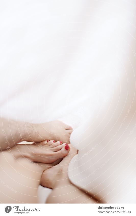 Cuddly Skin Pedicure Nail polish Bed Bedroom Couple Partner Legs Feet Sleep Embrace Happy Feminine Spring fever Passion Safety (feeling of) Sympathy Together