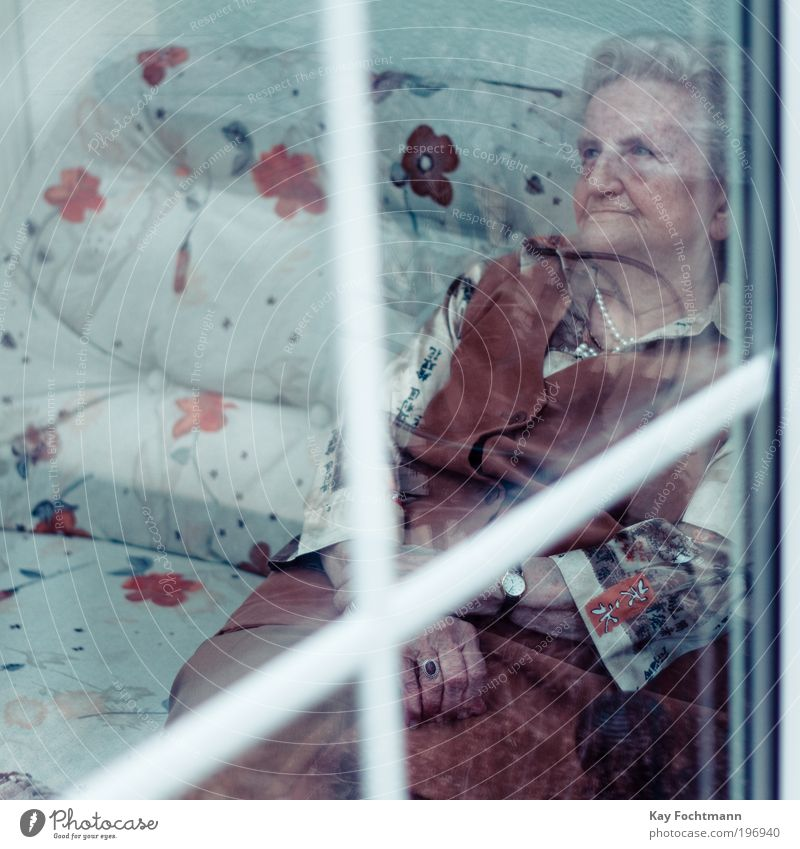 Woman Human being Old Blue Calm Loneliness Adults Senior citizen Sadness Think Dream Moody Brown Elegant Sit Living or residing