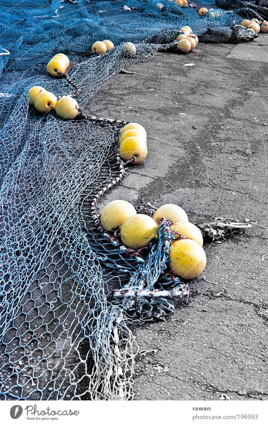 nets Coast Lakeside Ocean Blue Yellow Fishery Harbour Fisherman Net Fishing net Fishing (Angle) Dry Sphere Interlaced Node Colour photo Exterior shot