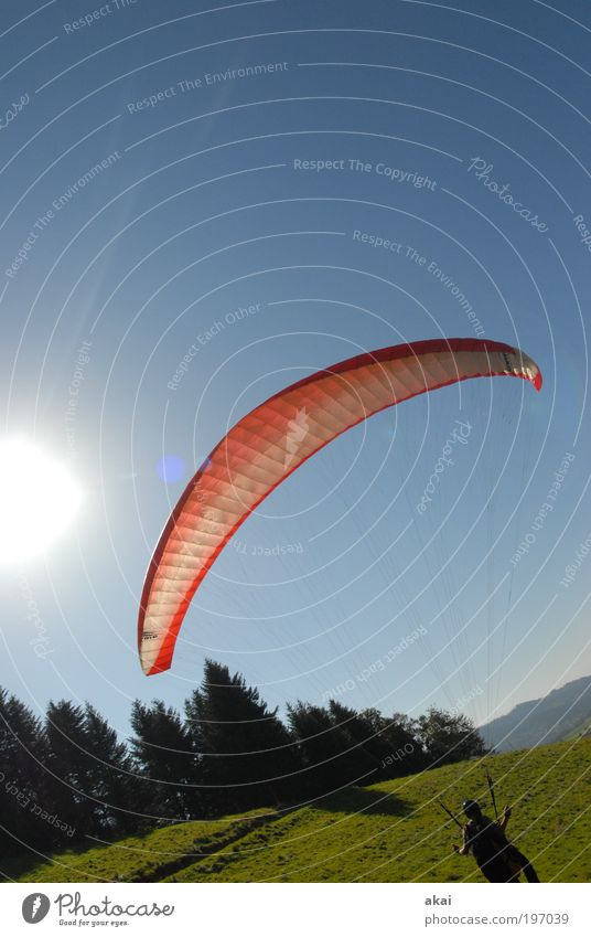 Oblique bird paraglider wind up exercises Lifestyle Joy Happy Leisure and hobbies Summer Summer vacation Mountain Sports Pilot Aviation Man Adults Environment