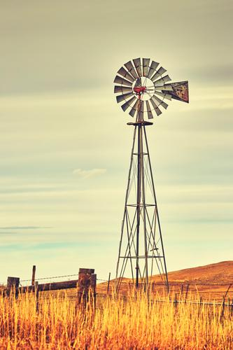 An old western windmill tower. Sky Autumn Wind Grass Field Old Retro Energy Western Farm Windmill Rural Wild West America background agriculture USA