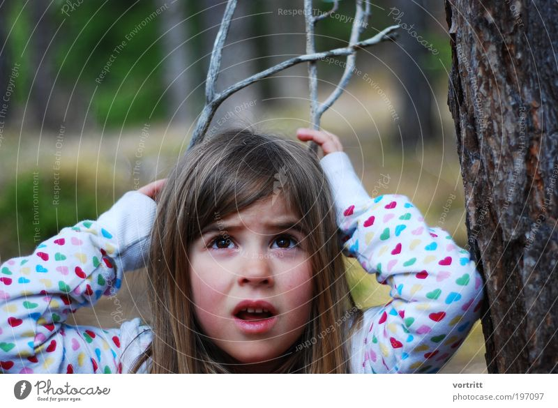 """Young animal Playing Hunting Trip Expedition Child Girl Infancy 1 Human being 3 - 8 years Nature Tree Wild animal """"stag,antler"""" Wood Brash Free Natural Brown"""