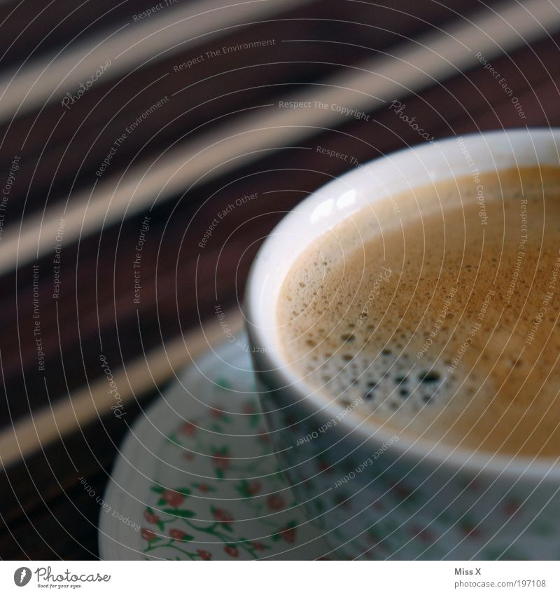 monkey Nutrition To have a coffee Buffet Brunch Beverage Coffee Espresso Cup Relaxation Calm Fragrance To enjoy Dark Delicious Sweet Foam Café Colour photo