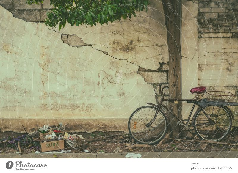 Old Town Tree Wall (building) Time Facade Retro Bicycle Dirty Culture Poverty Transience Broken Cute Footpath Change