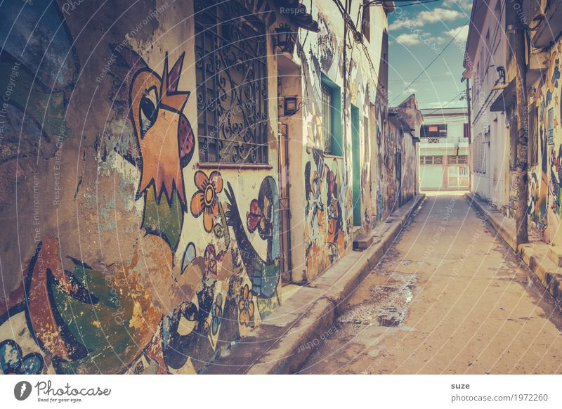 fair weather cock City trip House (Residential Structure) Art Culture Town Outskirts Old town Wall (barrier) Wall (building) Facade Graffiti Poverty Authentic