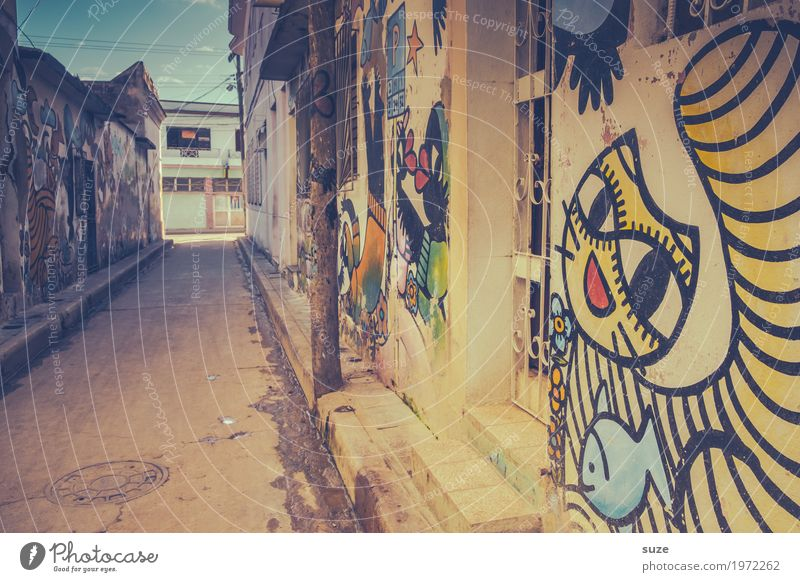 The laughing lane City trip House (Residential Structure) Art Culture Youth culture Town Outskirts Old town Facade Cat Graffiti Poverty Dirty Happiness Cute