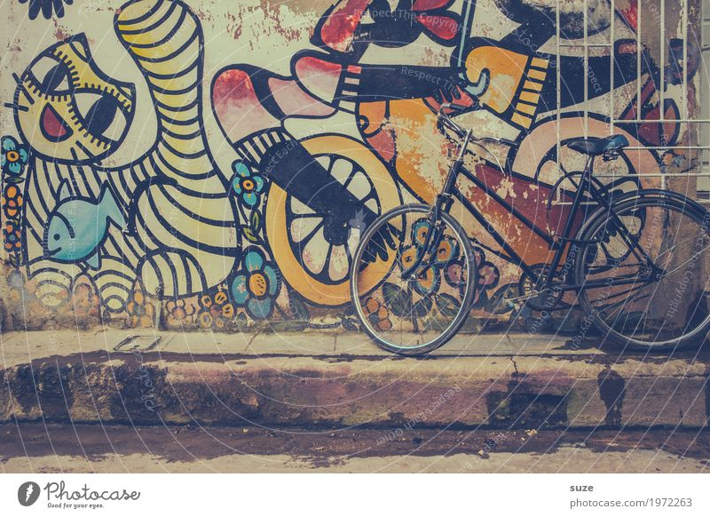 wheelbase City trip House (Residential Structure) Bicycle Art Culture Town Outskirts Old town Facade Cat Graffiti Poverty Dirty Cute Retro Past Transience